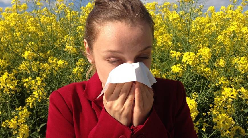 Febbre da fieno. Come difendersi dalle allergie.