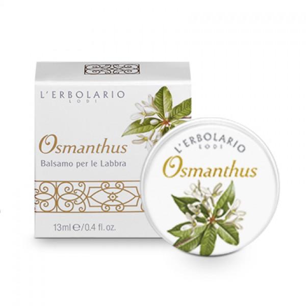 Osmanthus Balsamo Labbra 13 ml