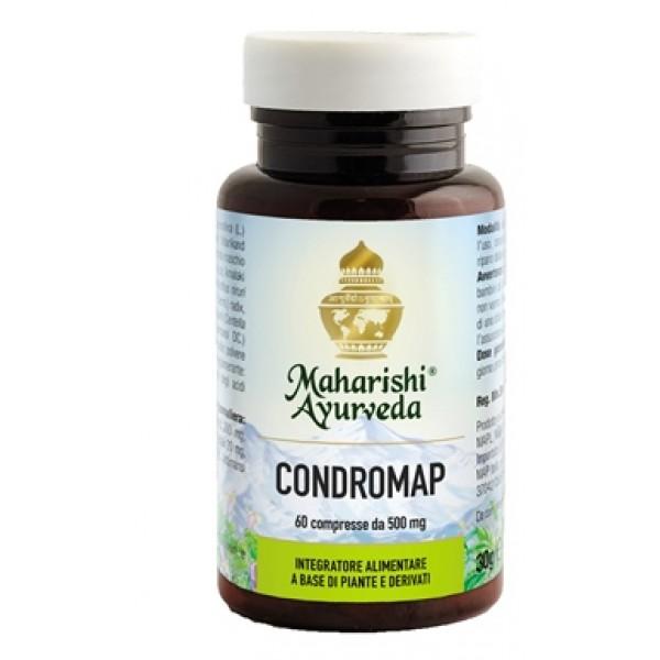 CONDROMAP (MA 209) 60 Cpr 30g