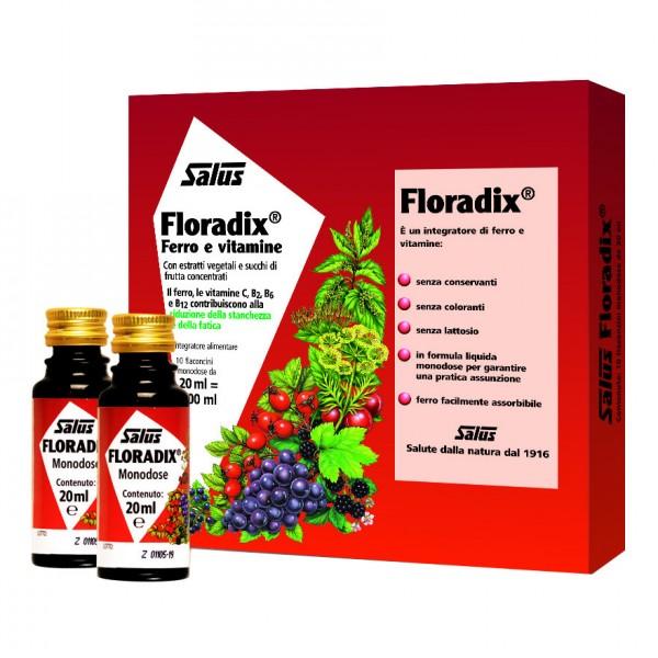 FLORADIX Ferro 10fl.20ml