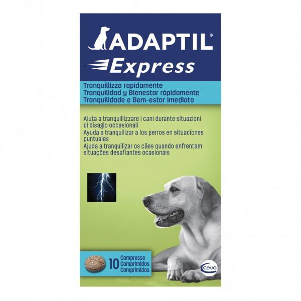 ADAPTIL 10 Cpr