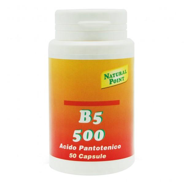 B5*500 50 Cps N-P